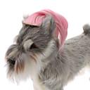 모든계절 - 핑크 플라스틱 - 헤어 악세서리 - 개 / 고양이