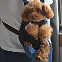 애완 동물 개를위한 휴대용 환기 그물 전면 배낭 가방 애완 동물 캐리어