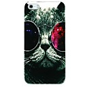 Cat with Colorfui Glasses Pattern Back Cover Case for iPhone 4/4S