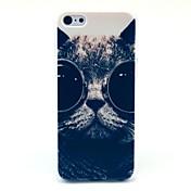 Para Diseños Funda Cubierta Trasera Funda Gato Dura Policarbonato para Apple iPhone 5c
