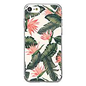 용 울트라 씬 투명 패턴 케이스 뒷면 커버 케이스 꽃장식 소프트 고무 용 Apple 아이폰 7 플러스 아이폰 (7) iPhone 6s Plus/6 Plus iPhone 6s/6 iPhone SE/5s/5