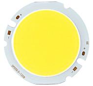 diy 17x23mil 20w 1900-2100lm 6000K weißes Licht COB LED Strahler (36-45V)