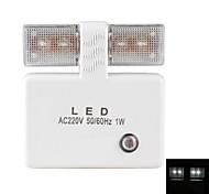 Light Sensor 1W White Light LED Night Lamp (220V)