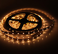 5M 300x3528SMD 3000k Warm White Light LED Flexible LED Strip Light (DC 12V)