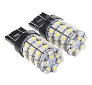 T20 7440 60x3528SMD luz blanca cálida Bombilla LED para el coche (12V, 2 pcs)