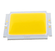 10W COB 1000LM 3200K Warm White Light LED Chip (32-36V)