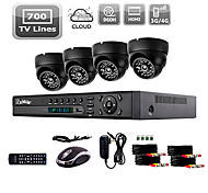 Liview® 700TVL Indoor Day/Night Security Camera and 4CH HDMI 960H Network DVR System