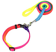 Fashionable Colorful Nylon Collars with Leashes for Pet Dogs