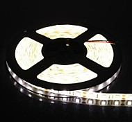 300x5050 SMD 72W 2000LM IP65 impermeabile luce bianca calda LED Light Strip (5-Meter/DC 12V)