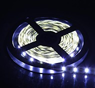 300x5630 SMD 60W 1300LM fredda luce bianca LED Light Strip (5-Meter/DC 12V)