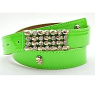Women Wide Belt,Party / Casual Leather All Seasons