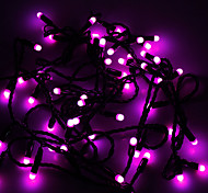 Waterproof 5M 3W 50-LED Purple Light LED Strip Light (110V)