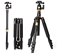 BeiKe Professional Portable Light Weight Magnesium Aluminium Tripod Monopod Q 555  BK 01 Ball Head Carrying Bag Kit  Max loading 8kg