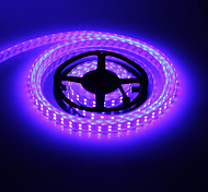 ZDM ™ waterdicht 5m 144W 600x5050smd rgb licht led strip lamp (DC 12V)