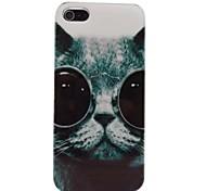 Patrón encantador Cool Cat PC de nuevo caso para el iPhone 4/4S