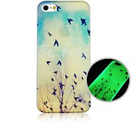 Birds of Autumn Pattern Fluorescence after SunninessHard Back Case for iPhone 4/4S