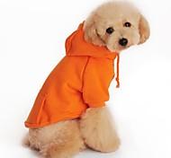 Hunde Kapuzenshirts Rot / Schwarz / Grau / Orange Hundekleidung Frühling/Herbst einfarbig