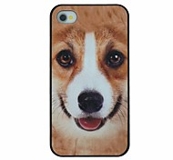 Small Yellow Dog Pattern PC Hard Back Cover Case for iPhone 4/4S