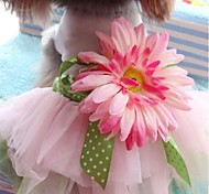 Dog Dress Pink Summer Floral / Botanical