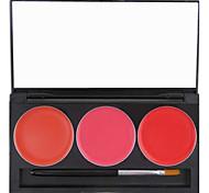 3 cores Nourshing hidratação profissional lábio geléia gloss maquiagem paleta cosmética com espelho&Jogo de escova 11 #
