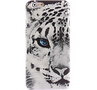 Tiger Face Design Hard Case for iPhone 6 Plus
