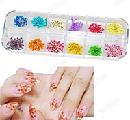 12-Color Natural Material Dry Flower Nail Art Decorations