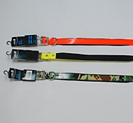 Cute Fluorescent Collar for Dogs