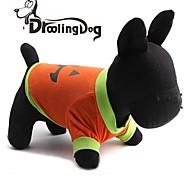 Katzen / Hunde T-shirt Orange Hundekleidung Frühling/Herbst Karton