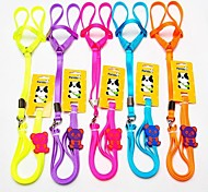 High Quality Nylon Knit Panda Pattern Leash for Pet Dogs(Assorted Colours)