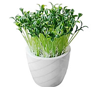 Plastic Little Sprout Pot Plant
