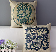 Комплект из 2 черепа хлопок / лен печатных декоративная подушка крышки