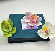 rosa branca verdadeiro toque Cymbidium verde flor cabeça 6 peças / lote de casamento e decoração nupcial