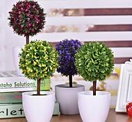 """3.9""""L 9.8""""H Pine Plants Ball in White Ceramic Basin"""