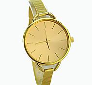 European Style Exquisite Fashion Steel Gold Watches