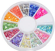 12 Color The Beautiful Natural Shell Powder Nail Art  Decoration kits
