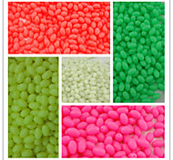 1000pcs/ 3.4*5 Fishing Plastic Hard Beads Luminous Oval Beads Fishing Terminal Tackle Lures