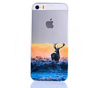 alce modello sottile guscio protettivo TPU trasparente per iPhone 5 / 5s