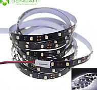 500cm 25W 300x3528SMD White / Cool White  Light LED Strip Lamp for Car (DC 12V)