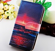 el cielo de la tarde la caja de cuero de la PU para Samsung Galaxy S2 i9100