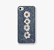 Tied for the Chrysanthemum Pattern PC Phone Back Case Cover for iPhone5C