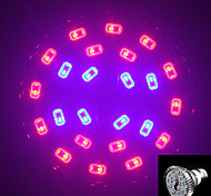 MORSEN® E27 10W 300LM 16Red and 8Blue SMD24 LED Bulbs for Flowering Plant Hydroponic System Led Grow Light (85-265V)