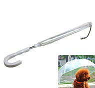 Pet Activities Umbrella The Small Dog Equipped With Traction Chain