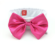 Solid Color Bow Tie  Collar for Dogs and Cats (Assorted Colors and Sizes)