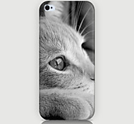 White Cat Pattern Phone Case Back Cover Case for iPhone5C