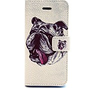 The Dog Pattern PU Leather Phone Holster For iPhone 5C