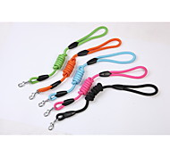 [BEJIARY] Nylon Rope Leash for Dog in 5colours  New Arrival