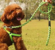 Medium And Small Dog Fashion Nylon Tow Rope