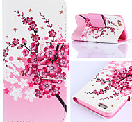 Plum Flower Pattern PU Leather Full Body Cases Phone Case with Card Bag for iPhone 6