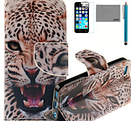 LEXY® Little Leopard Pattern PU Full Body Leather Case with Screen Protector and Stylus for iPhone 5C