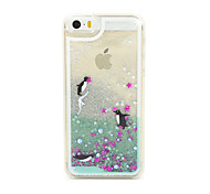 Penguin Flow Sand PC Material Cell Phone Case for iPhone 6/6S